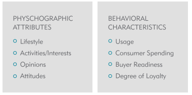 Psychographic_Attributes.PNG